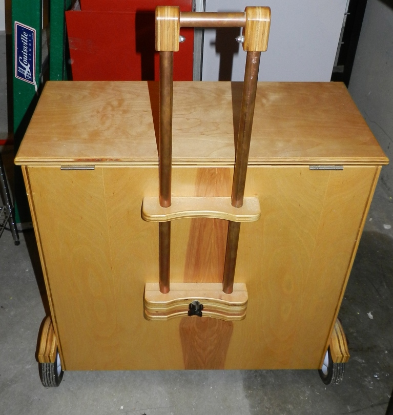 Rear view with luggage style handle extended
