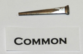 Common Cut Nail