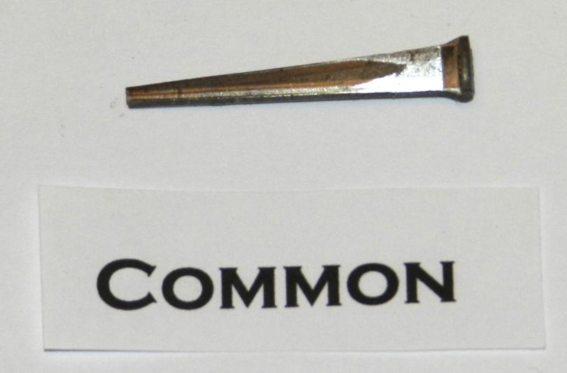 Common Cut Nail
