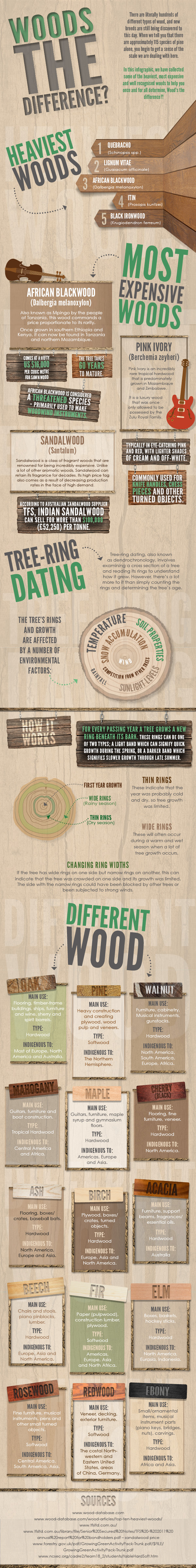Wood Differences Infographic